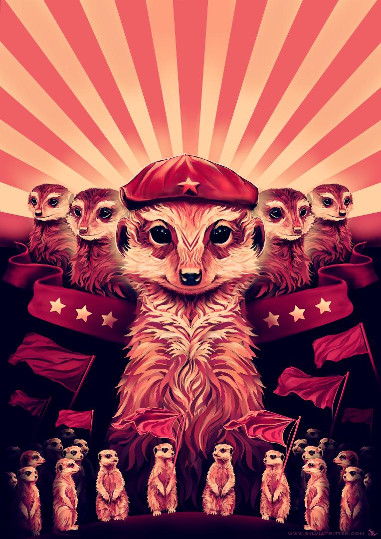 Maverick Meerkat (10.10) © Sylvia Ritter