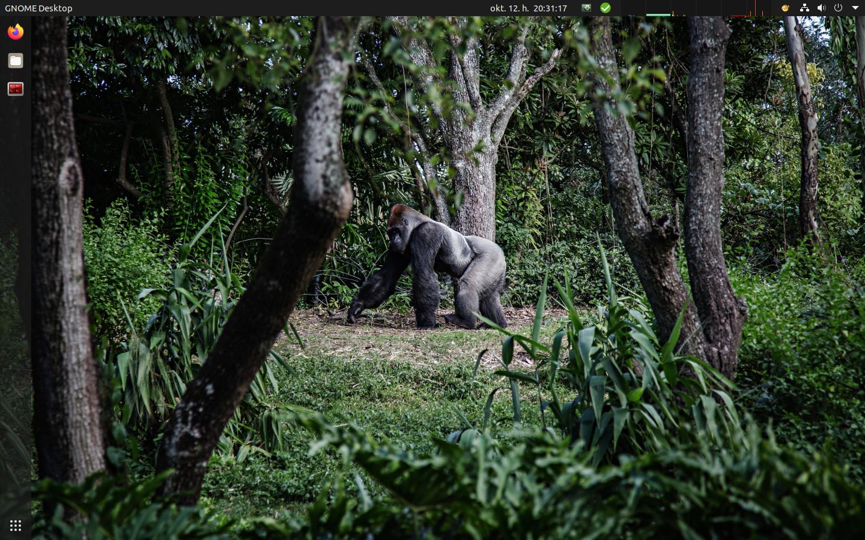 Ubuntu 20.10 - Gorilla háttérkép