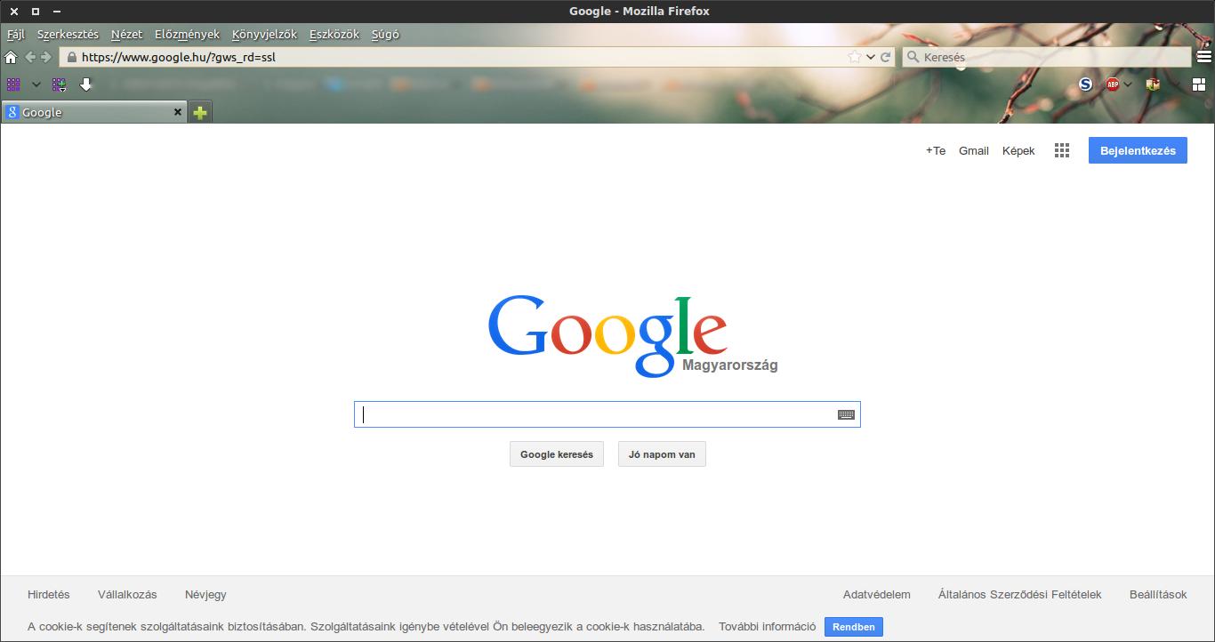 Saját Firefox