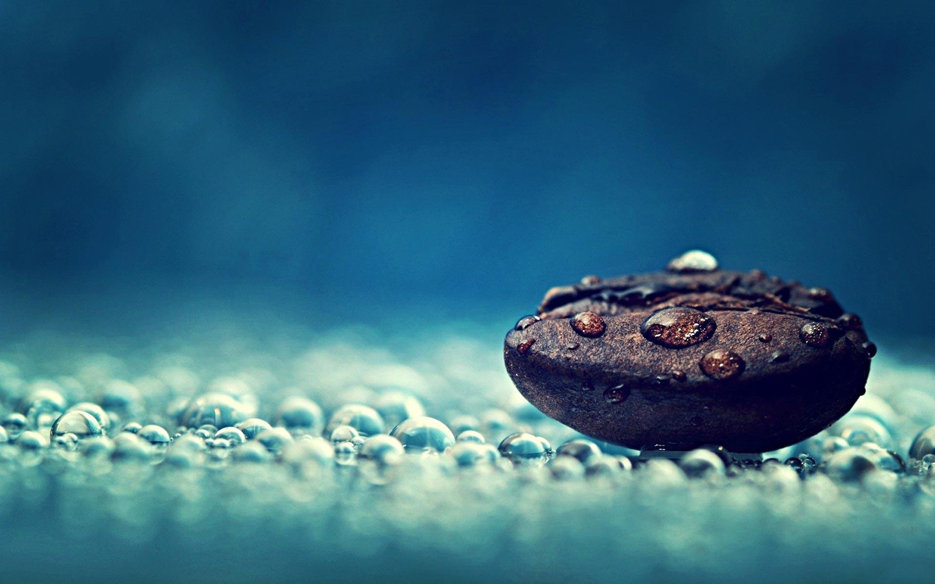 Drops On Pebble