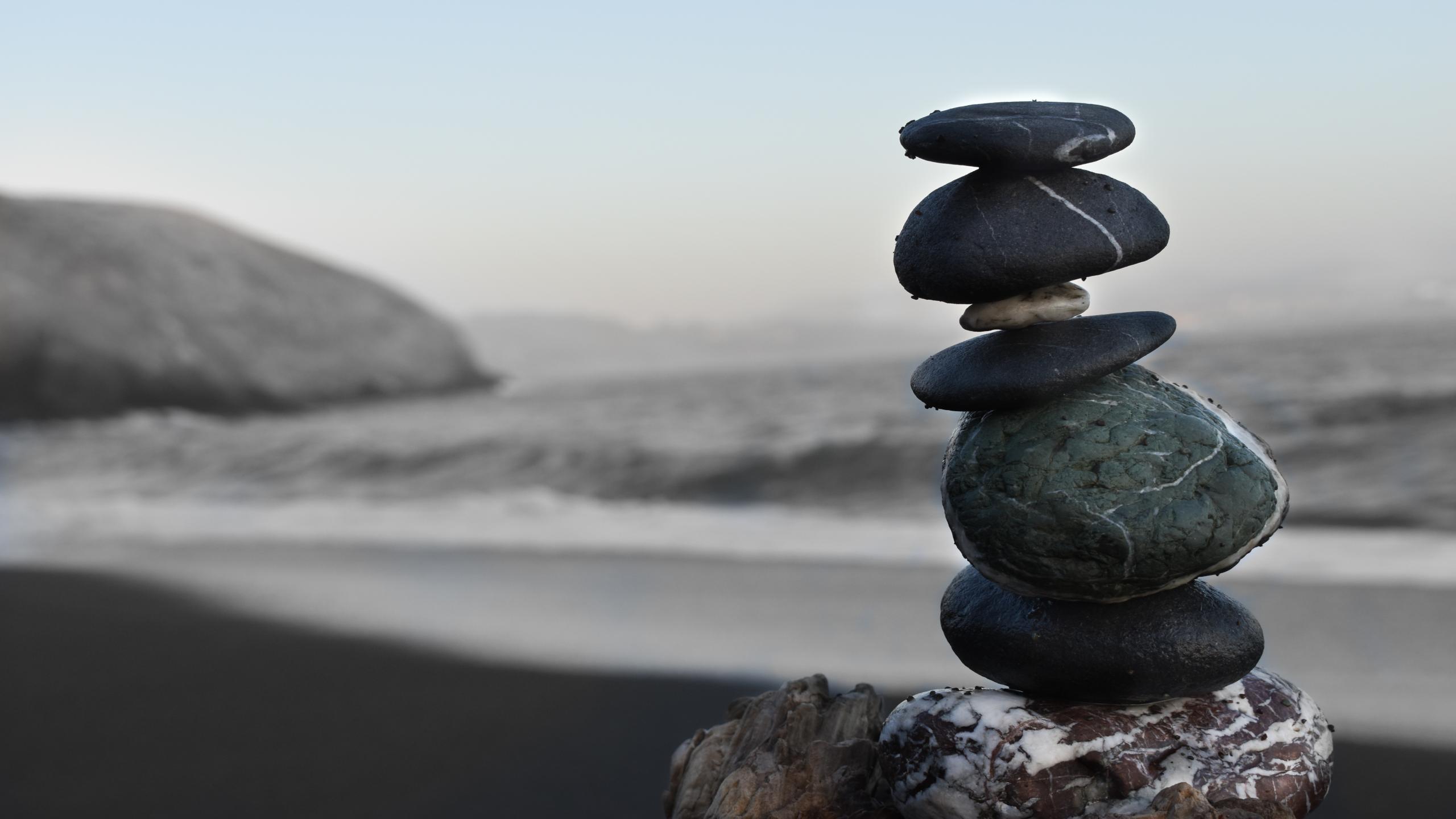 Zen Lover