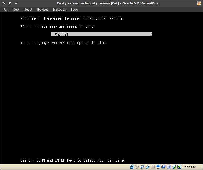 Ubuntu szerver telepítő üdvözlés, technikai előzetes